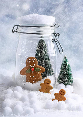 Photograph - Gingerbread by Amanda Elwell