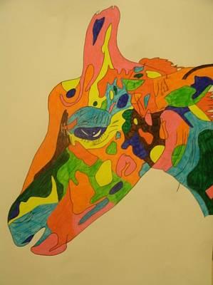 Drawing - Giraffe by Samantha L
