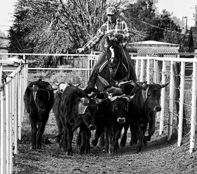 Photograph - Git Along Dogies Bw by C H Apperson