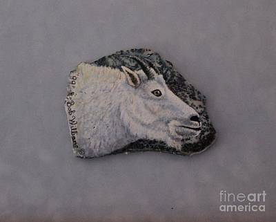 Mountain Goat Drawing - Glacier Park Mountain Goat by Bob Williams
