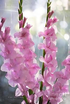 Gladiolus Original by Richard J Thompson