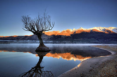 Photograph - Glenorchy by Brad Grove