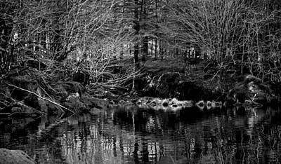 Photograph - Glentenassig Woods And Lakes by Barbara Walsh