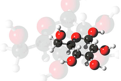 Glucose Molecules Art Print by Carol & Mike Werner