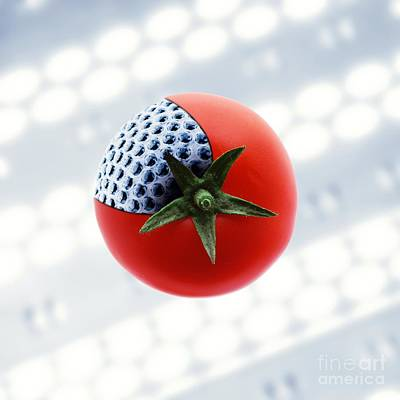 Digitally Manipulated Photograph - Gm Tomato, Conceptual Image by Richard Kail