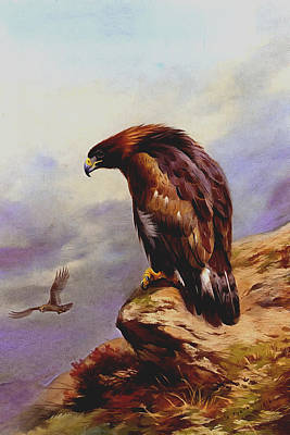 Soaring Painting - Golden Eagle by Archibald Thorburn