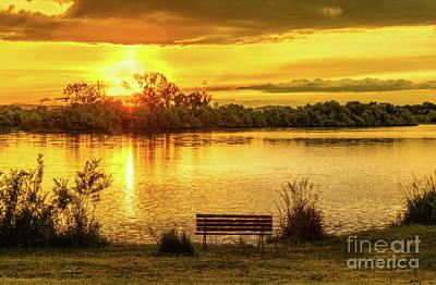Golden Pond Wall Art - Photograph - Golden Evening by Robert Bales