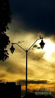 Photograph - Golden by Judy Via-Wolff