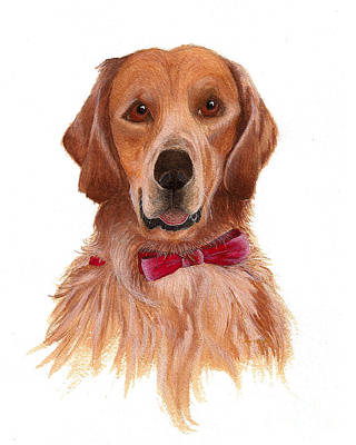 Art Print featuring the painting Golden Labrador by Nan Wright