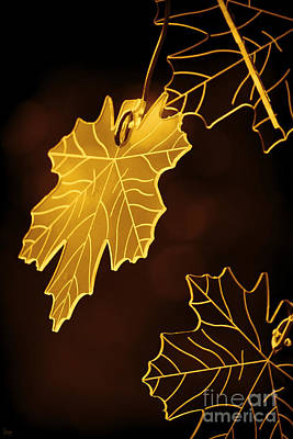 Photograph - Golden Leaves by Jeff Breiman