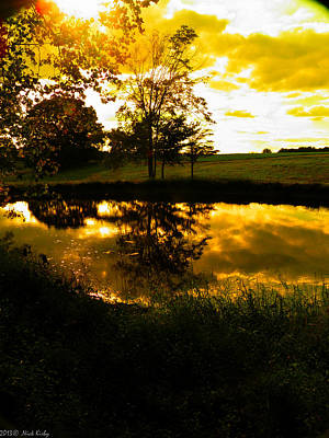 Photograph - Golden Pond 3 by Nick Kirby