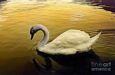 Digital Art - Golden Pond by Angelika Drake