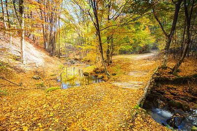 Golden River Art Print by Evgeni Dinev