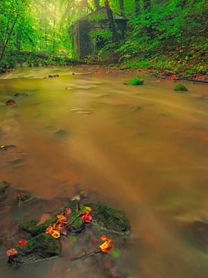 Art Print featuring the photograph Golden River by Maciej Markiewicz
