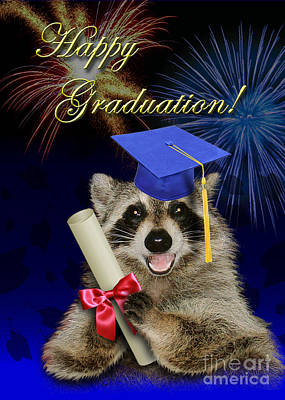 Photograph - Graduation Raccoon by Jeanette K