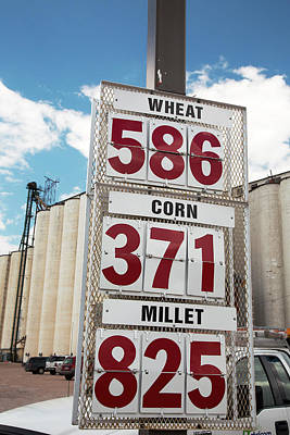 Bushel Photograph - Grain Prices by Jim West