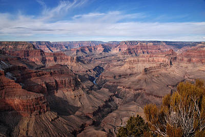Photograph - Grand Canyon by Melany Sarafis