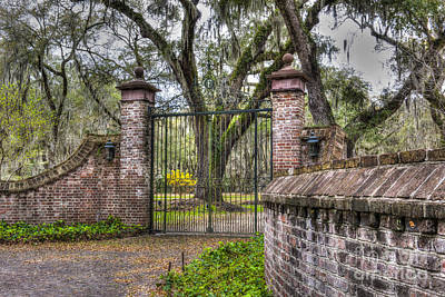 Photograph - Grand Entrance by Dale Powell