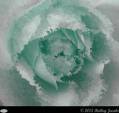 Digital Art - Granny's Rose Teal by Holley Jacobs