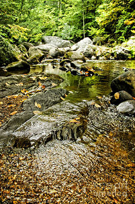 Granville Gorge Art Print by HD Connelly