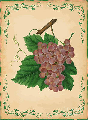 Grapes Illustration Art Print by Indian Summer