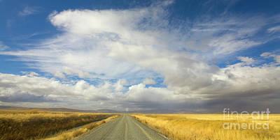 Photograph - Grasses And Clouds Klamath Basin by Yva Momatiuk John Eastcott