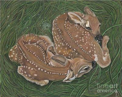 Twin Fawns Drawing - Gred And Forge by Angie Deaver