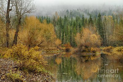Target Threshold Photography - Green and Gold by Idaho Scenic Images Linda Lantzy