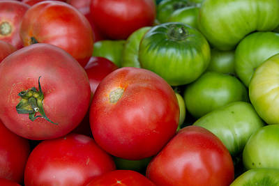 Photograph - Green And Red Tomatoes by Dina Calvarese