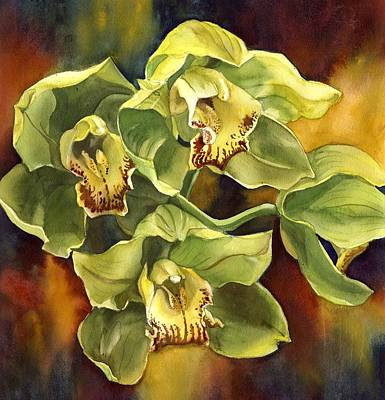 Green Cymbidium Orchid Art Print by Alfred Ng