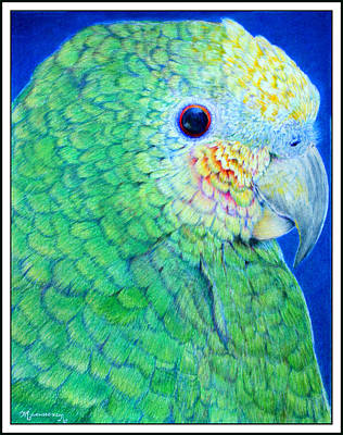 Painting - Green Parrot by Mariarosa Rockefeller