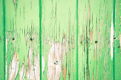 Green Wood Art Print by Tom Gowanlock