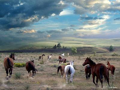 Greener Pastures Art Print by Bill Stephens
