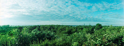 Greenery Along Fort Tilden Beach, Fort Print by Panoramic Images