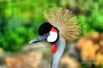 Feathers Painting - Grey Crowned Crane by George Atsametakis