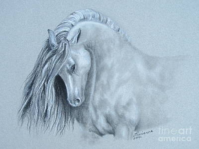 Grey Horse Art Print by Laurianna Taylor