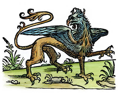 Painting - Griffin, 1533 by Granger