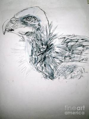 Drawing - Griffon by Patries Van Dokkum