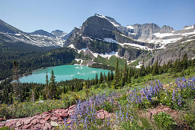 Grinnell Lake Flowers Art Print