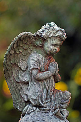 Photograph - Guardian Angel by Jerry Gammon