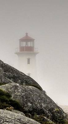 Animals Royalty-Free and Rights-Managed Images - Halifax Fog by Jennifer Wheatley Wolf