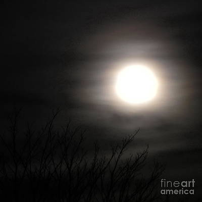 Digital Art - Halloween Moon by Tim Richards