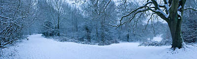 Hampstead Photograph - Hampstead Heath In Winter, North by Panoramic Images