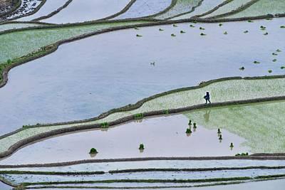 Peoples Republic Of China Photograph - Hani Rice Terraces Near Yuanyang by Tony Camacho