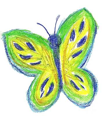 Drawing - Happy Butterfly by Jessi and James Gault