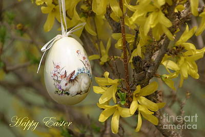 Photograph - Happy Easter by Living Color Photography Lorraine Lynch
