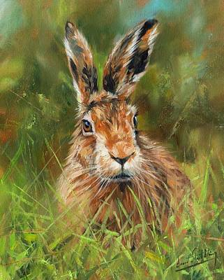 Animals Paintings - hARE by David Stribbling