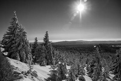 Photograph - Goetheway In Winter, Harz by Andreas Levi
