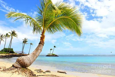 Photograph - Hawaiian Paradise by Kristine Merc