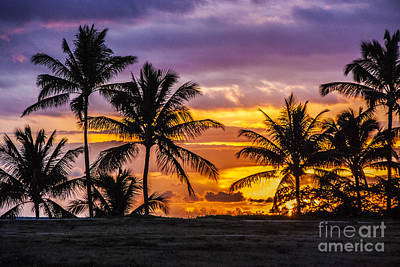 Hawaiian Sunset Art Print by Juli Scalzi
